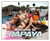 Club Papaya